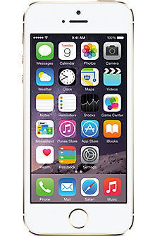 Apple® iPhone® 5s 16GB in Gold (Certified Pre-Owned)