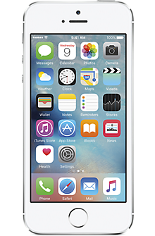 Apple® iPhone® 5s 16GB in Silver (Certified Pre-Owned)