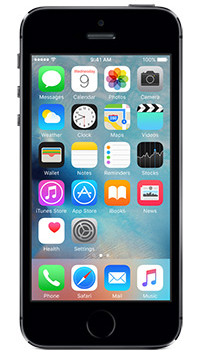 Apple iPhone 5s - Space Gray 64GB