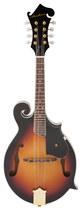 Archer - Telluride 8-string Florentine-style Mandolin - Tobacco Sunburst