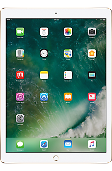 12.9-inch Apple® iPad® Pro 256GB in Gold