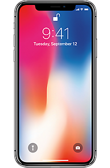 Apple® iPhone® X 256GB in Space Gray