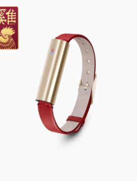 Misfit Ray Fitness & Sleep Tracker + Red Leather Band (Gold Stainless Steel)