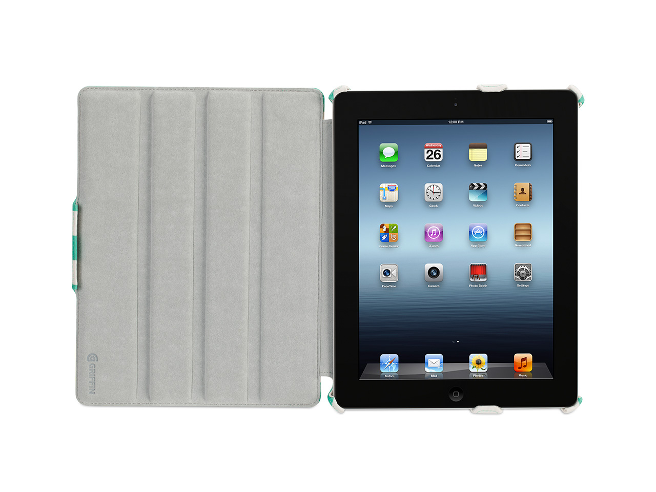 Green Striped Cabana Journal Case for iPad 2