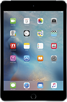 Apple® iPad® mini 4 128GB in Space Gray
