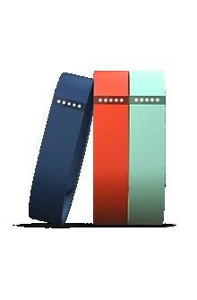 Fitbit Flex Accessory 3-Pack Small
