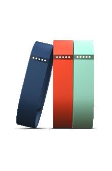 Fitbit Flex Accessory 3-Pack Large